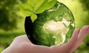 CAP campione di sostenibilità